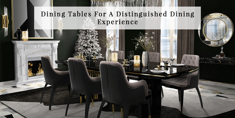 Experience Modern Dining Table Design Ideas